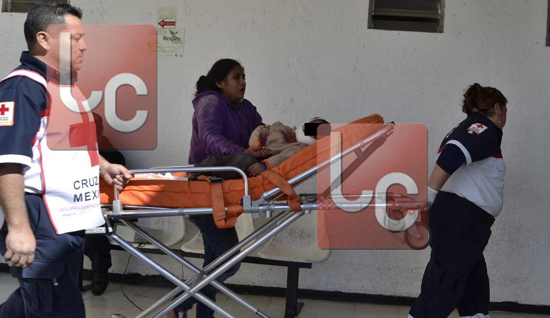 Pit bull ataca a menor de tres años en Sabinas